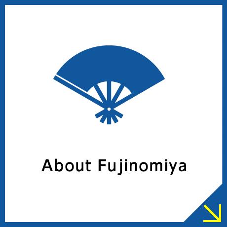 The History of     Mt. Fuji Worship